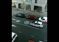 Enlace a Policía juega al escondite durante la cuarentena