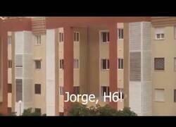 Enlace a Recopilación de vídeos de la cuarentena en España
