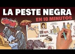 Enlace a La historia de la peste negra