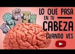 Enlace a Lo que pasa en tu cabeza cuando ves YouTube