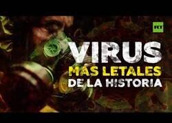 Enlace a Los virus más letales de la historia