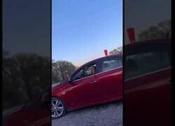 Enlace a Frenar en seco es lo peor que puedes hacer si te dicen que hay una bebida en tu coche