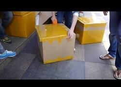 Enlace a El empaquetador más rápido del mundo