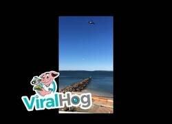 Enlace a Utilizando un dron para pescar desde casa
