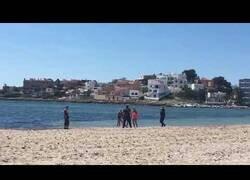 Enlace a Detenido por intentar ahogar a un policía en una playa de Ibiza