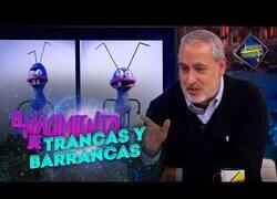 Enlace a El origen de Trancas y Barrancas, las hormigas de El Hormiguero