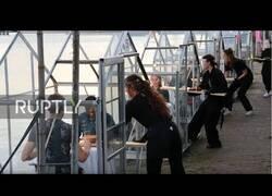 Enlace a Mini invernaderos, la solución para las terrazas en Amsterdam