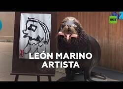 Enlace a Un león marino aprende a pintar durante la pandemia