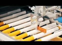 Enlace a Procesos de producción y máquinas increíbles