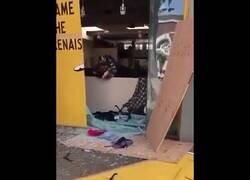 Enlace a Los manifestantes devuelven los objetos saqueados a las tiendas de EEUU