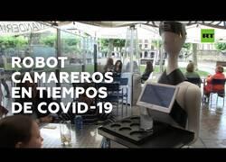 Enlace a Los primeros 'robots camareros' implementados en España