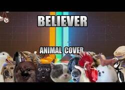 Enlace a 'Believer' de Imagine Dragons interpretada por animales