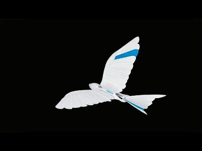 El robot-pájaro que simula el aleteo de las aves a la perfección