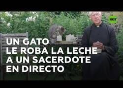 Enlace a Un gato le roba la leche a un sacerdote en pleno acto