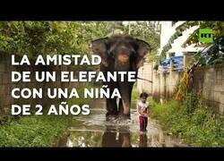 Enlace a La mejor amiga de esta niña de 2 años es una elefanta