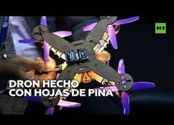 Enlace a Fabrican un dron hecho con hojas de piña