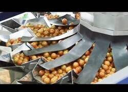 Enlace a El increíble funcionamiento de alguna máquinas de procesado de alimentos