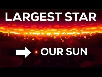 Comparativa entre las estrellas más grandes del universo