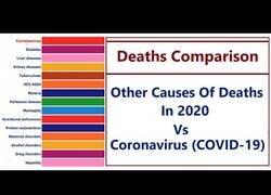 Enlace a Comparativa: Coronavirus vs otras causas de muerte en 2020