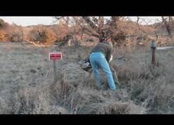 Enlace a Salvando a un ciervo de una valla durante la temporada de caza
