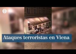 Enlace a Las impactantes imágenes de los ataques terroristas sucedidos ayer en Viena