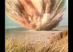 Enlace a El día que decidieron explosionar el cadáver de una ballena y no salió del todo bien