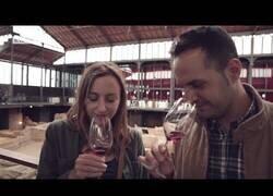 Enlace a Supuestos expertos del vino son engañados con un vino de un euro