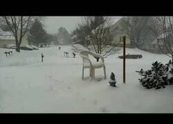 Enlace a El 'Time-Lapse' de la nieve que puede llegar a caer en Virginia en 48 horas