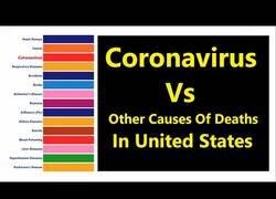 Enlace a La Covid y otras causas de muerte en Estados Unidos