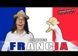Enlace a Descubriendo Francia con Zorman