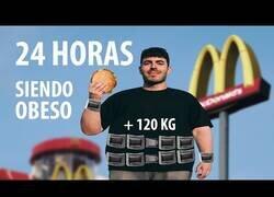Enlace a 24 horas viviendo como una persona obesa