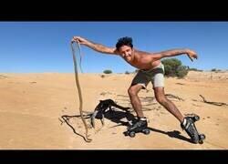 Enlace a Atrapando serpientes con patines de ruedas