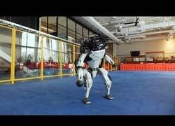 Enlace a Lo bien que bailan los robots de Boston Dynamics