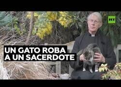 Enlace a Un gato se come la comida de un sacerdote