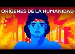 Enlace a ¿Cuál es el origen de la humanidad?