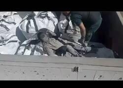 Enlace a La Guardia Civil encuentra a un hombre en una bolsa de cemento