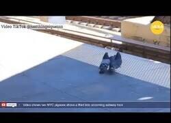 Enlace a Dos palomas arrojan a otra a las vías del tren