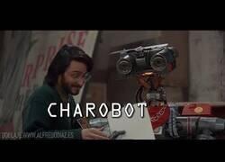 Enlace a El robot perfecto para la pandemia