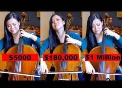 Enlace a La diferencia sonora entre tres violonchelos de diferente precio