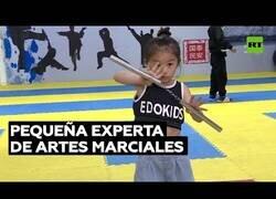 Enlace a Una maestra en artes marciales de tan solo 7 años