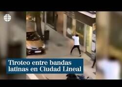 Enlace a Tiroteo a plena luz del día en Ciudad Lineal, Madrid