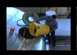 Enlace a ¿Cómo se hace la cerveza?