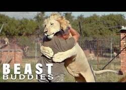 Enlace a El hombre que abrazaba a los leones