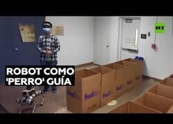 Enlace a El 'perro robot' que podría ayudar a las personas ciegas