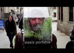 Enlace a Artista belga crea 'el oasis portátil' para reemplazar a las mascarillas