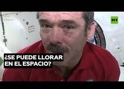 Enlace a ¿Qué pasa si lloras en el espacio?