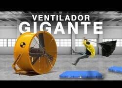 Enlace a Enfrentándose a un ventilador gigante