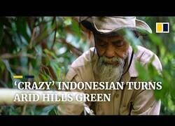 Enlace a Sadiman, el hombre que levantó un bosque en una zona árida de Indonesia
