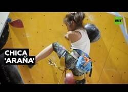 Enlace a 'La niña-araña' que es capaz de escalar 12 metros en 11 segundos