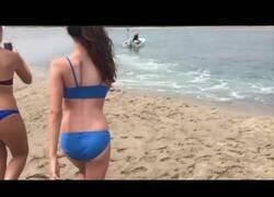 Enlace a Rescatan a un tiburón blanco que había quedado varado en una playa